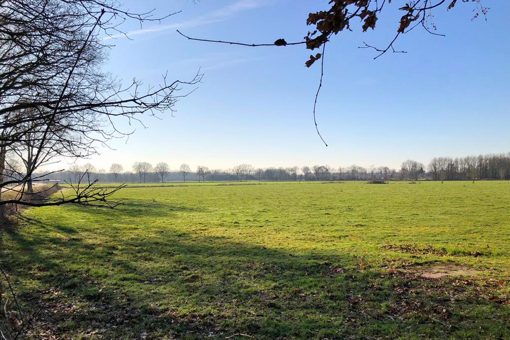 Suffolks start line - CWGC Cemetery in Overloon