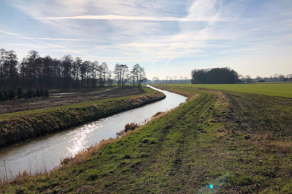 Loobeek River
