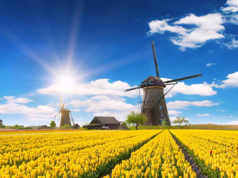 Holland - View Tours